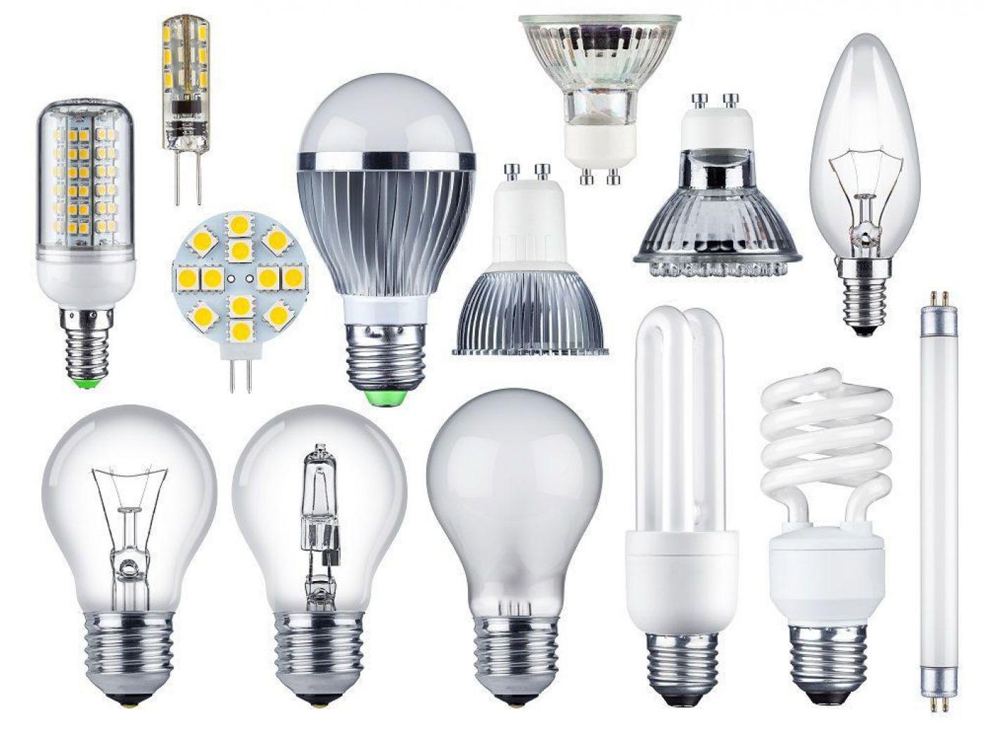 halogenlampe entsorgen